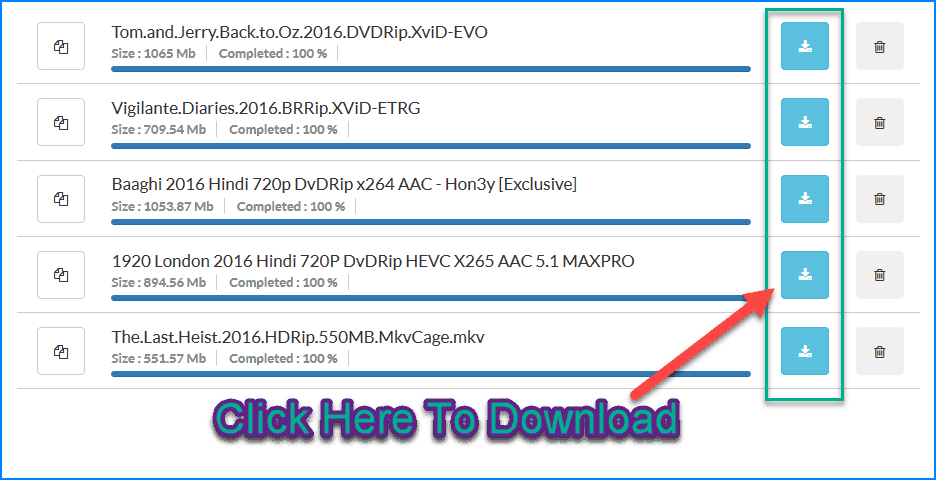 Downloaded file from seeded torrent
