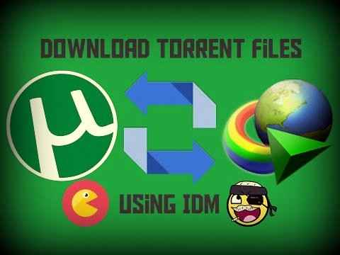 How to download Torrent files with IDM?