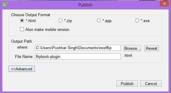 Publishing option in flipbook maker