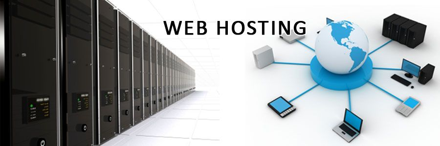 4 Important Factors to Help You Choose the Right Web Host