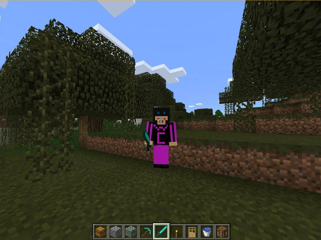 ow to use custom player skins in Minecraft: Windows 10 Edition Beta