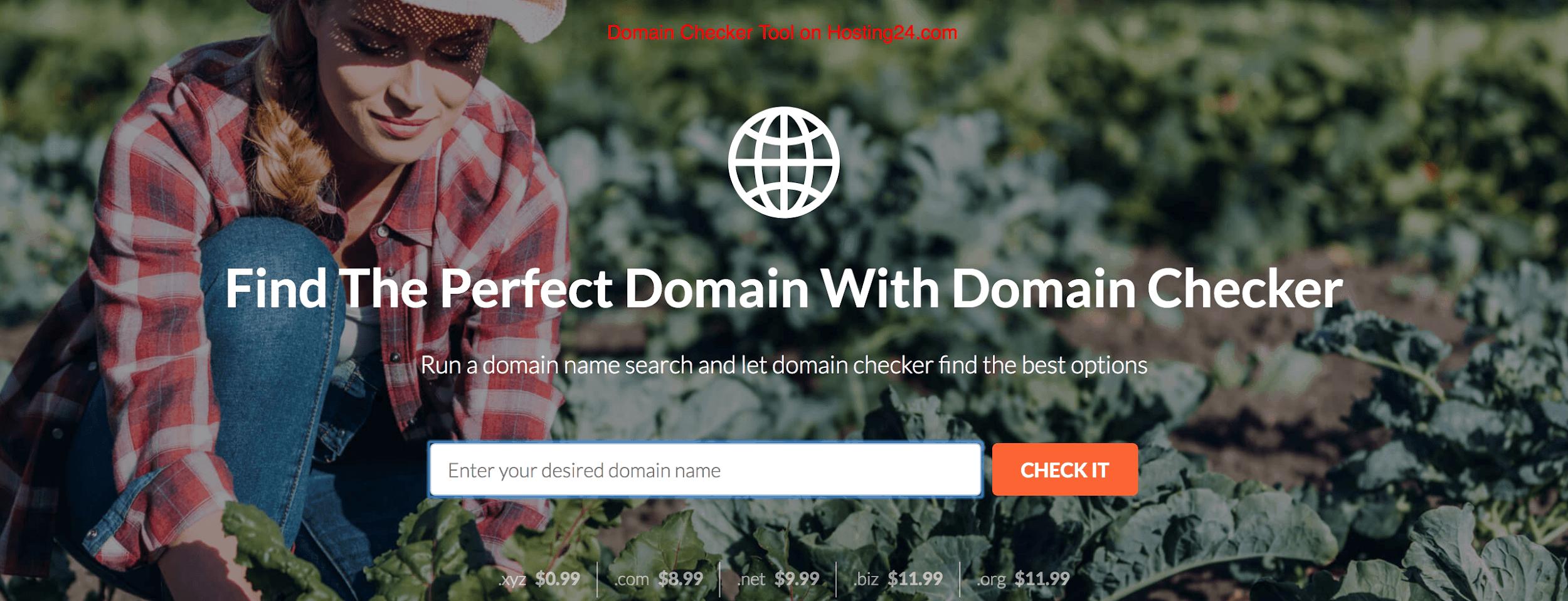 A Comprehensive Review on Hosting24.com Web Hosting Services. 2