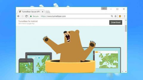 Image result for tunnelbear vpn